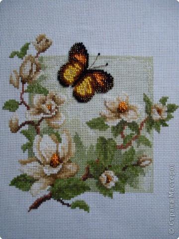 Вышивка: Магнолия и бабочка