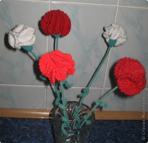 Гвоздики в вазе. фото 2