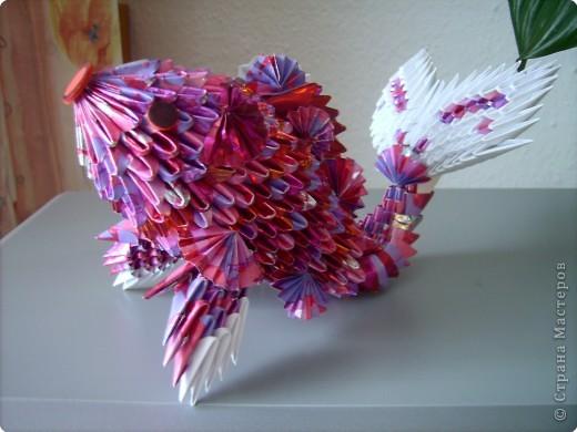 Оригами модульное: золотая рыбка  2 фото 6