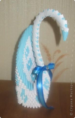 Лебеди и стрекозы фото 3