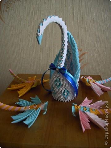 Лебеди и стрекозы фото 5