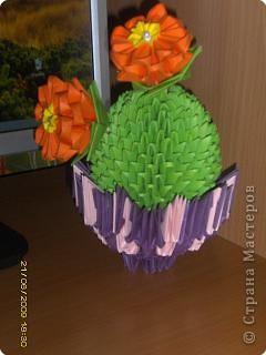 Оригами модульное: в общую коллекцию