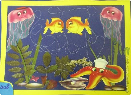 Подводная одисея. фото 5