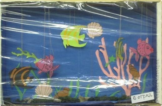 Подводная одисея. фото 8