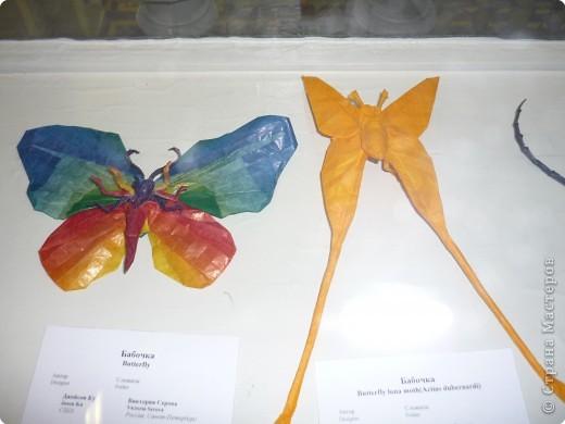 Выставка в Зоологическом музее Санкт-Петербурга работает всё лето. Поскольку находится в энтомологическом отделе, то и представлено больше всего фигур насекомых. А ещё есть паучки. фото 9