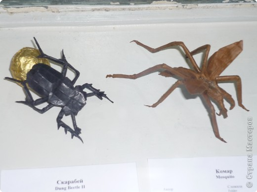 Выставка в Зоологическом музее Санкт-Петербурга работает всё лето. Поскольку находится в энтомологическом отделе, то и представлено больше всего фигур насекомых. А ещё есть паучки. фото 18