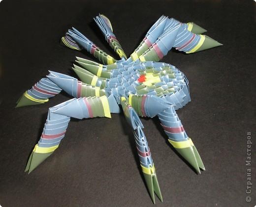 Оригами модульное: паук фото 2