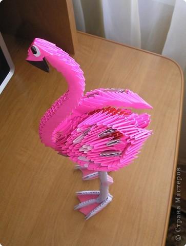 Оригами модульное: розовый фламинго фото 3