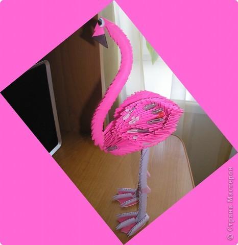 Оригами модульное: розовый фламинго фото 4