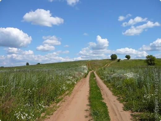 Я иду за ягодой по дороге с облаками. фото 1