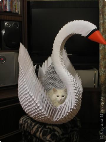 Модули для этой птички собраны из бумаги формата А4 фото 3