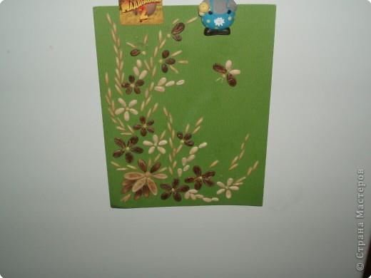 картинка из арбузных и дынных косточек