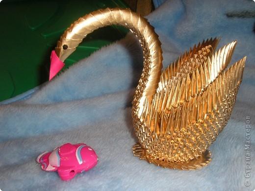 Оригами модульное: Золотой лебедь из Голицыно фото 1