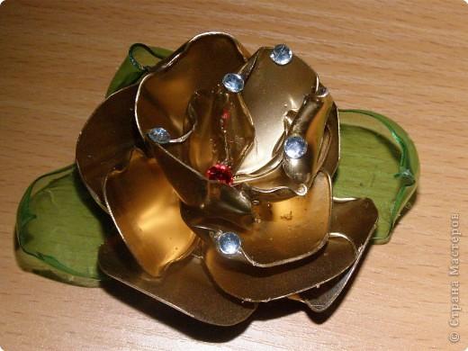 Золотится роза чайная...