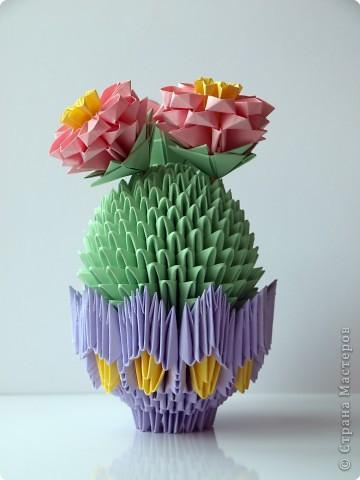 Цветущий кактус. Вид сверху. фото 2