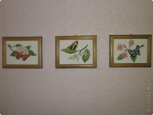 Вышивка крестом: Бабочки фото 4