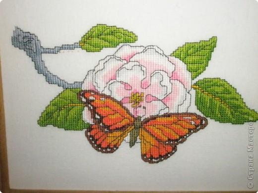 Вышивка крестом: Бабочки фото 3