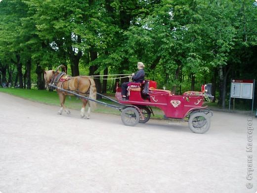 Вот и приехали мы в город Санкт-Петербург, разместились в гостинице и началась череда автобусных и пешеходных экскурсий... фото 38