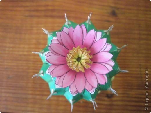 Бумагопластика: Кактусарий фото 3
