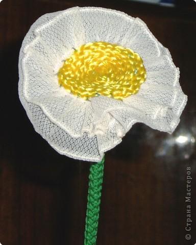 Цветы для любимых фото 2