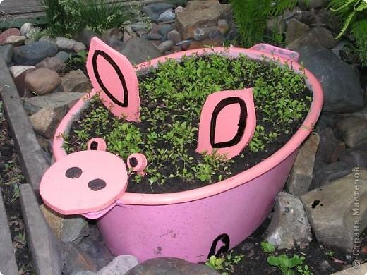 Предварительно тазик намыли и почистили... Засыпали земли и высадили  рассаду лобелии (когда зацветёт она должна быть розового цвета). фото 3