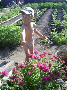 Творение внука. Вот что он увидел на даче: цветы, бабочек (они красного цвета на цветах), солнышко и облака. фото 2