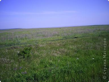 Приглашаю прогуляться со мной до нашего Ахмата пешком. Который находится на берегу Волги. Идти 6 км от ближайшего населенного пункта. фото 3