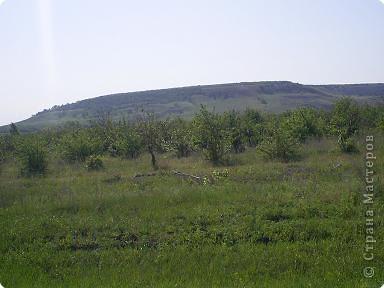 Приглашаю прогуляться со мной до нашего Ахмата пешком. Который находится на берегу Волги. Идти 6 км от ближайшего населенного пункта. фото 4