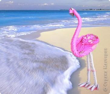 Оригами модульное: розовый фламинго фото 1