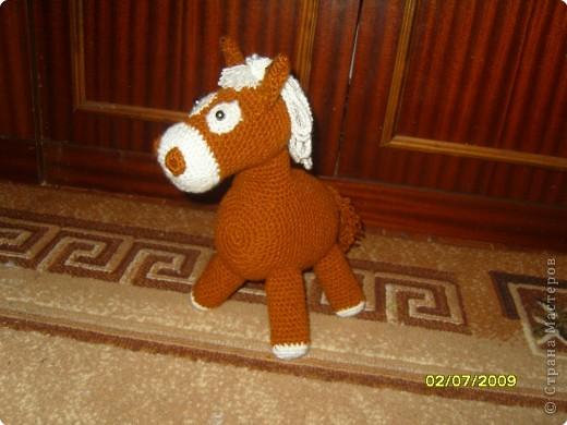 Лошадка фото 1