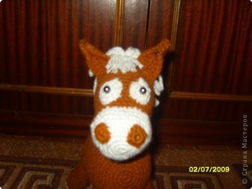 Лошадка фото 4