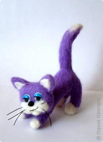 Фельдцевание: Сиреневая кошка