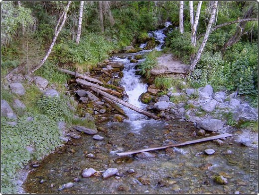 Я родилась в Горном Алтае. Здесь очень красивая природа. Любуясь другими фоторепортажами, решила показать вам свою Родину. Её часто называют Голубой Алтай, так как горы в далеке имеют синие оттенки. фото 3