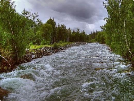 Я родилась в Горном Алтае. Здесь очень красивая природа. Любуясь другими фоторепортажами, решила показать вам свою Родину. Её часто называют Голубой Алтай, так как горы в далеке имеют синие оттенки. фото 4