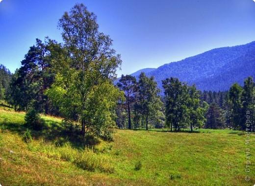 Я родилась в Горном Алтае. Здесь очень красивая природа. Любуясь другими фоторепортажами, решила показать вам свою Родину. Её часто называют Голубой Алтай, так как горы в далеке имеют синие оттенки. фото 1