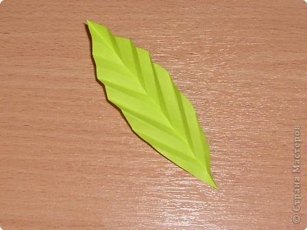 Моделирование: Мастер-класс. Бумагопластика. Изготовление листа. фото 4