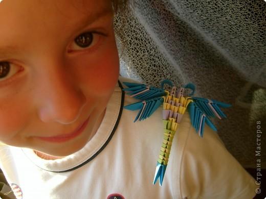 стрекозки.. фото 1
