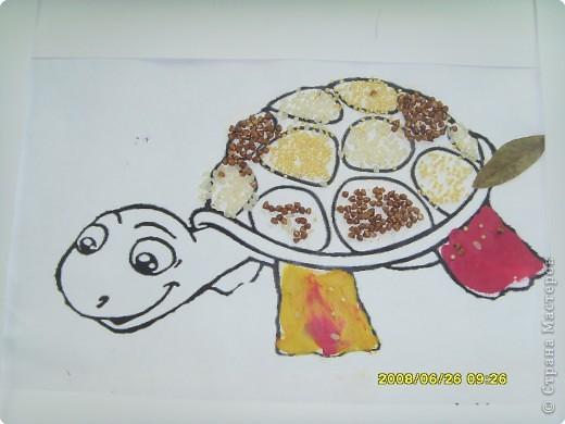 """Все  работы   выполнены  детьми  детского  центра  """"Разумейка"""". Для черепах был использован шаблон   http://umnyedetki.ru/raskraski4.html фото 3"""