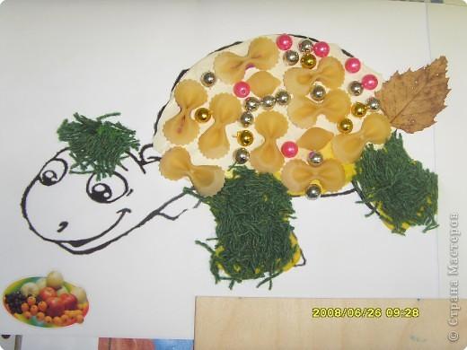 """Все  работы   выполнены  детьми  детского  центра  """"Разумейка"""". Для черепах был использован шаблон   http://umnyedetki.ru/raskraski4.html фото 7"""