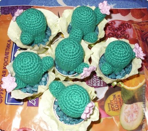 Вязание крючком: Кактусы-игольницы фото 2