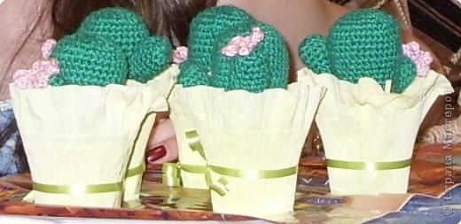 Вязание крючком: Кактусы-игольницы фото 3