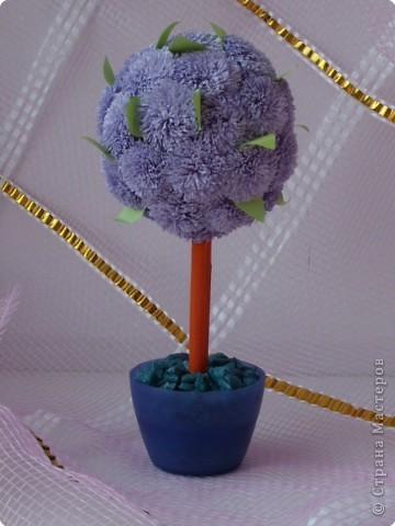 Цветущее мини-дерево фото 1