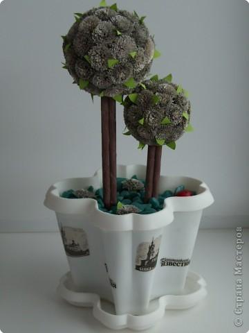 Газетное деревце фото 1