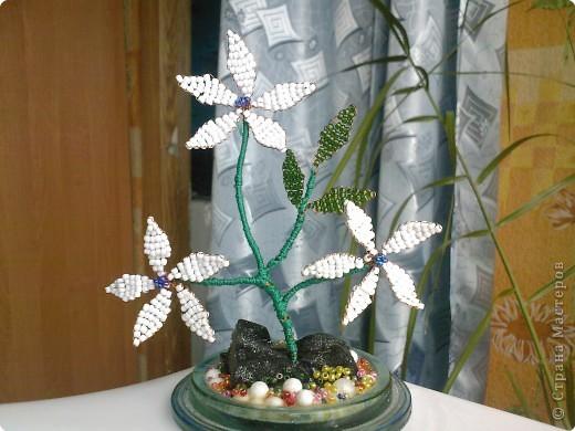 Бисероплетение: Несколько моих цветочков* фото 2