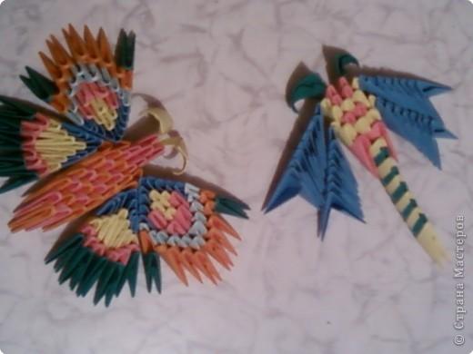 Оригами модульное: Стрекоза и бабочка фото 1
