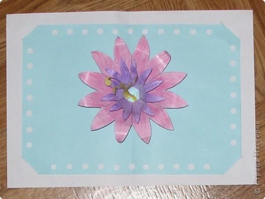 Цветок лотоса фото 1