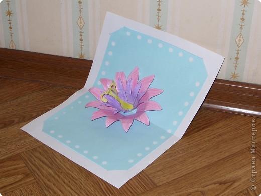 Цветок лотоса фото 2