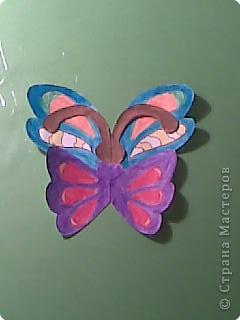 Бабочка фото 5