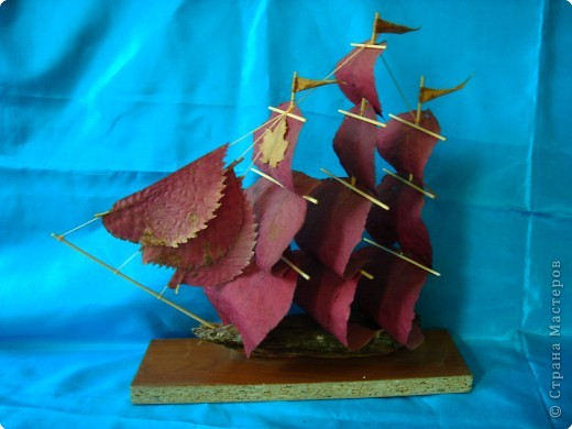 Потаенное судно Ефима Никонова фото 4