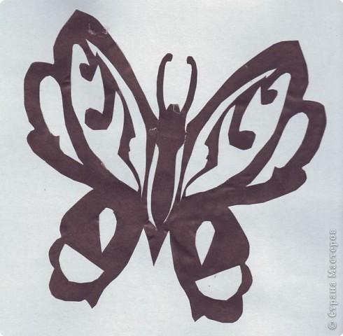 Вырезание симметричное, Вытынанка: Бабочки фото 2